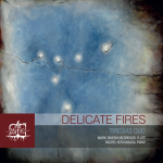 Delicate Fires Cover SQUARE